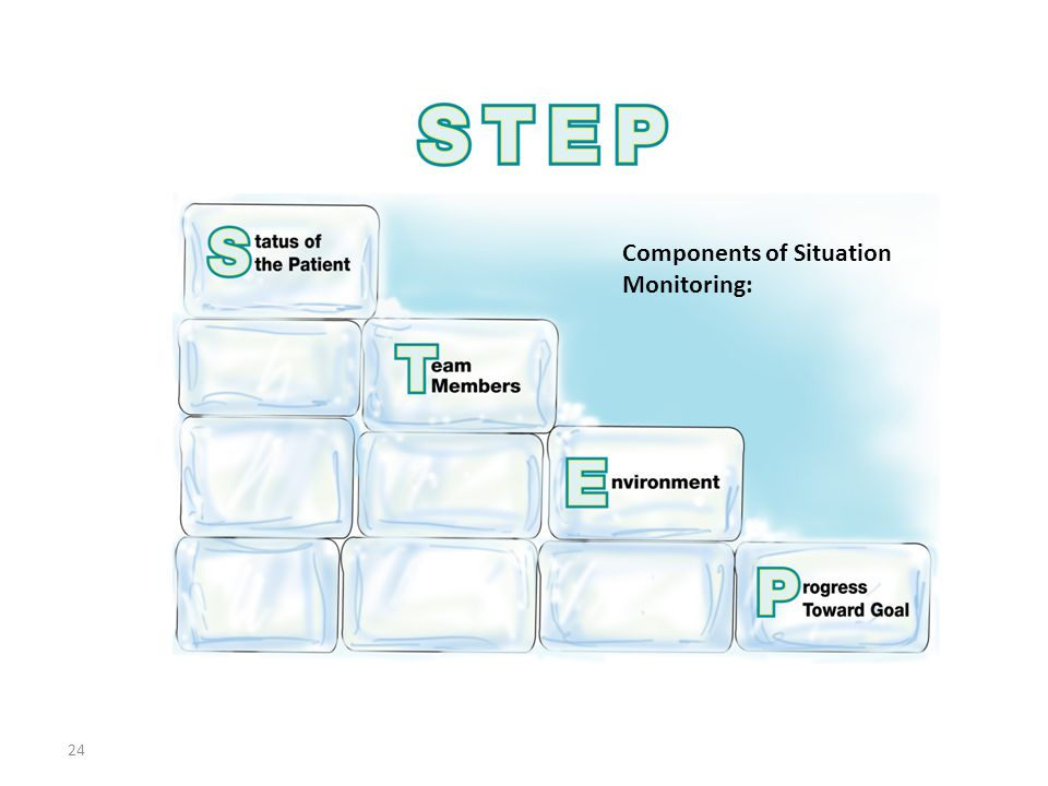 24 Components of Situation Monitoring: