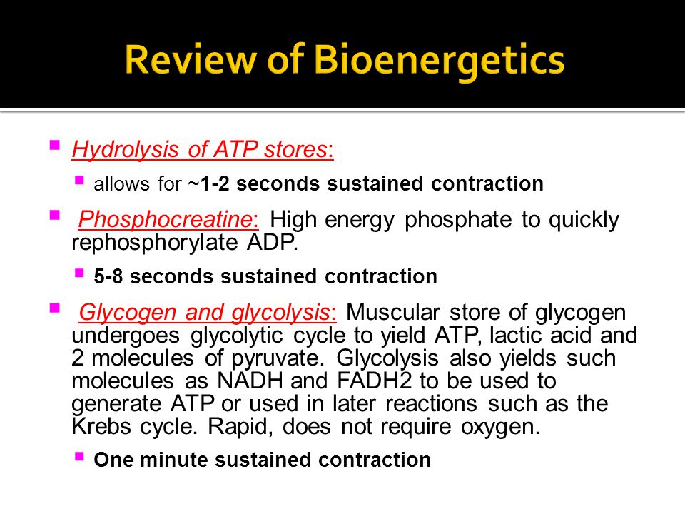  Hydrolysis of ATP stores:  allows for ~1-2 seconds sustained contraction  Phosphocreatine: High energy phosphate to quickly rephosphorylate ADP.