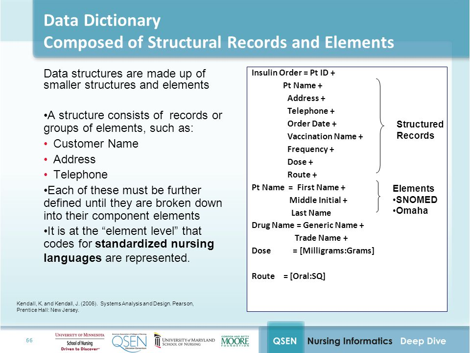 66 Data Dictionary Composed of Structural Records and Elements Data structures are made up of smaller structures and elements A structure consists of records or groups of elements, such as: Customer Name Address Telephone Each of these must be further defined until they are broken down into their component elements It is at the element level that codes for standardized nursing languages are represented.