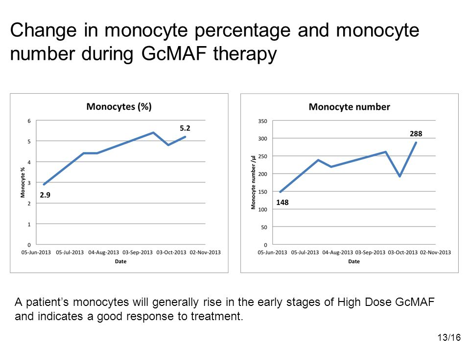 Change in monocyte percentage and monocyte number during GcMAF therapy A patient's monocytes will generally rise in the early stages of High Dose GcMAF and indicates a good response to treatment.
