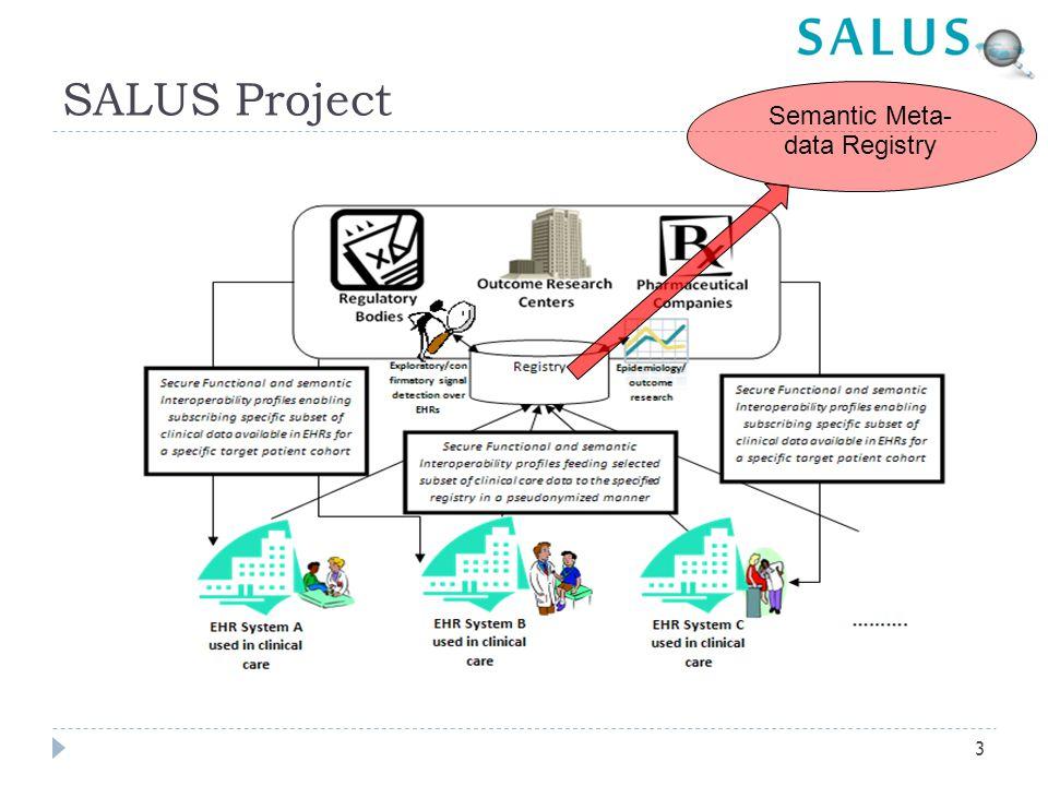 SALUS Project Semantic Meta- data Registry 3