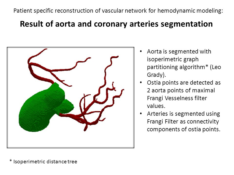 Patient specific reconstruction of vascular network for hemodynamic modeling: Result of skeletonization Result of distance-ordered homotopic thinning.
