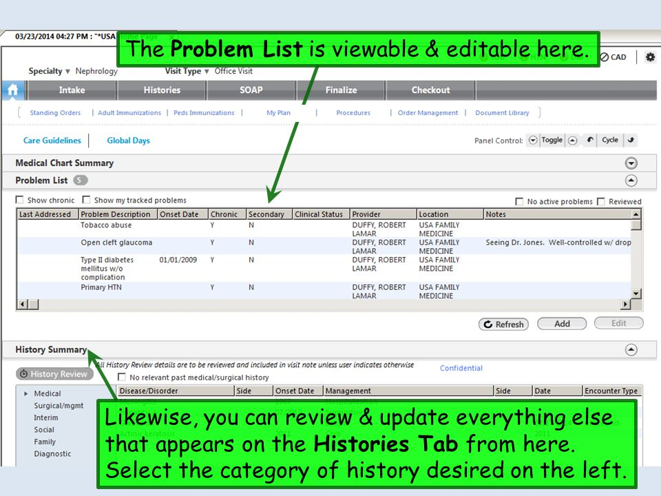 The Problem List is viewable & editable here. Likewise, you can review & update everything else that appears on the Histories Tab from here. Select th