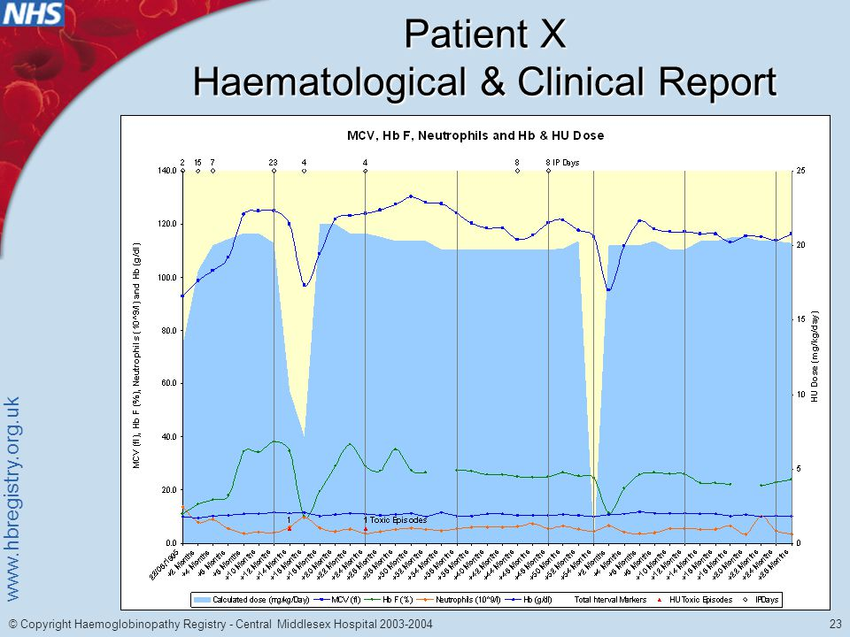 www.hbregistry.org.uk 23 © Copyright Haemoglobinopathy Registry - Central Middlesex Hospital 2003-2004 Patient X Haematological & Clinical Report
