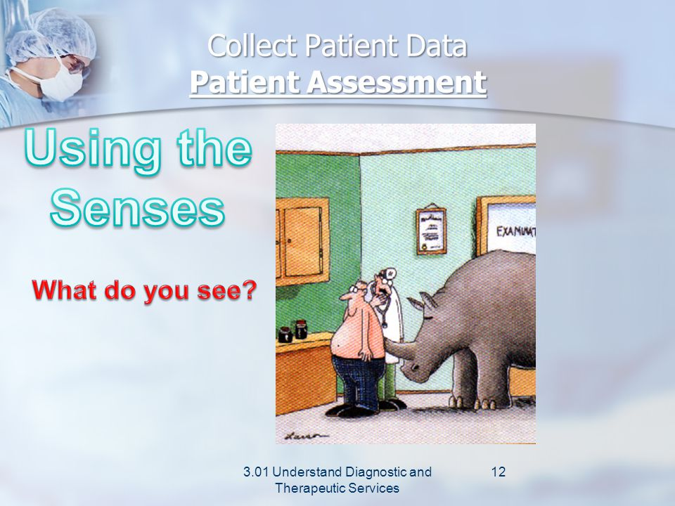 Collect Patient Data Patient Assessment 3.01 Understand Diagnostic and Therapeutic Services 11