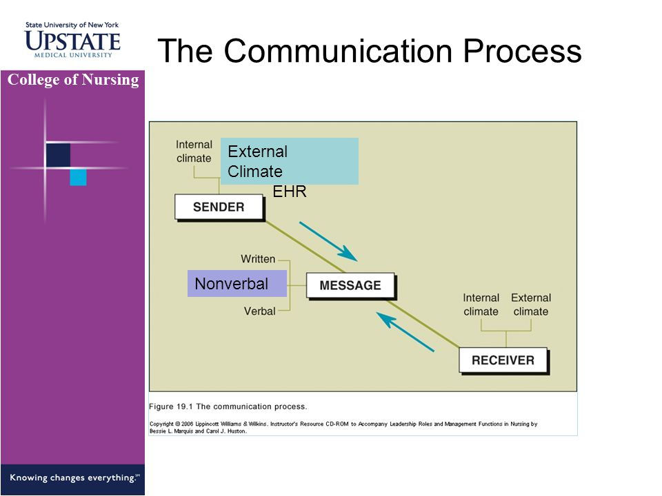 The Communication Process Nonverbal External Climate EHR