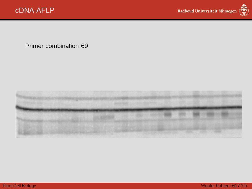 Plant Cell Biology Wouter Kohlen 0427705 cDNA-AFLP Primer combination 69
