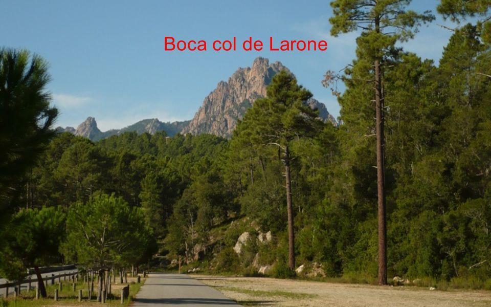 Boca col de Larone