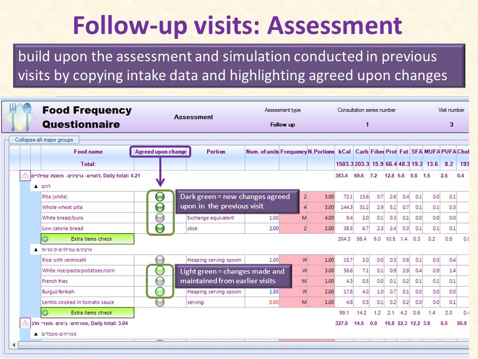Follow-up visits: Assessment build upon the assessment and simulation conducted in previous visits by copying intake data and highlighting agreed upon changes Dark green = new changes agreed upon in the previous visit Light green = changes made and maintained from earlier visits
