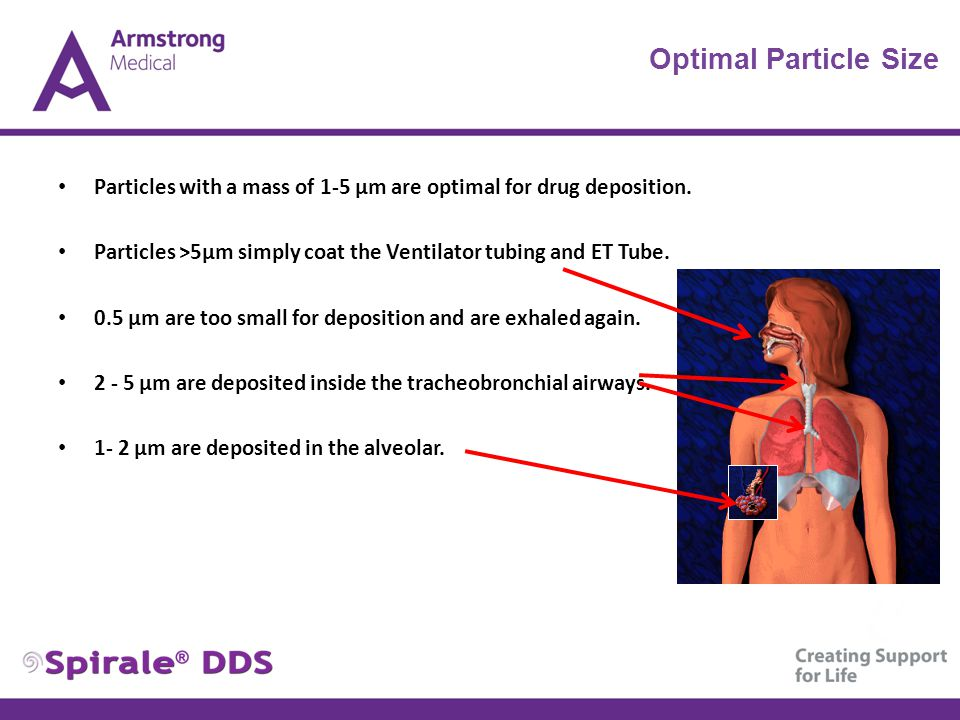 Optimal Particle Size Particles with a mass of 1-5 μm are optimal for drug deposition. Particles >5μm simply coat the Ventilator tubing and ET Tube. 0