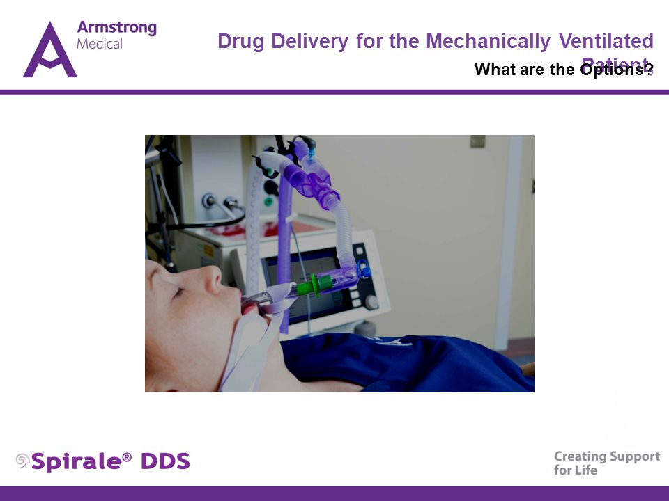 Drug Delivery for the Mechanically Ventilated Patient, What are the Options?