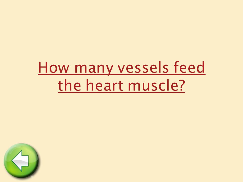 How many vessels feed the heart muscle