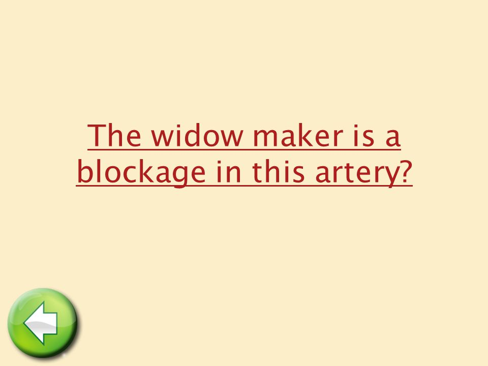 The widow maker is a blockage in this artery