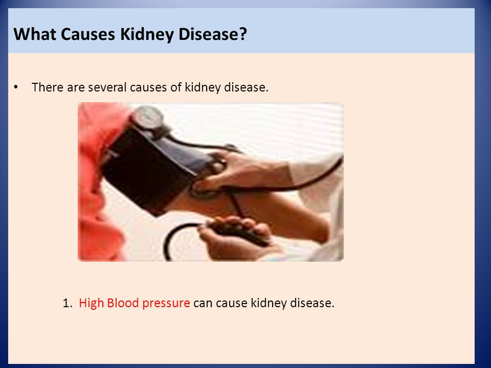 What Causes Kidney Disease.There are several causes of kidney disease.