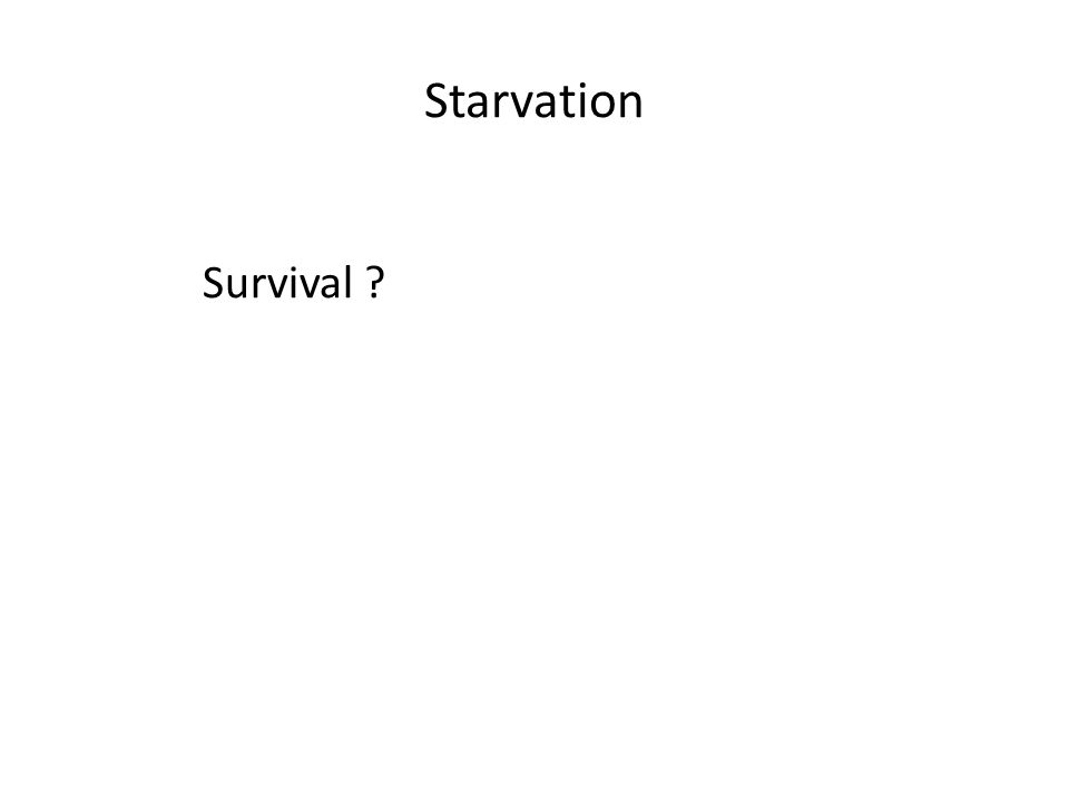 Starvation Survival