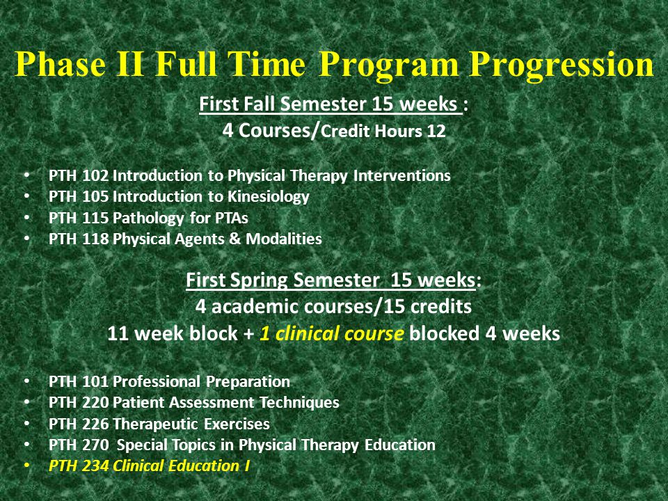 Phase II Full Time Program Progression First Fall Semester 15 weeks : 4 Courses/ Credit Hours 12 PTH 102 Introduction to Physical Therapy Intervention