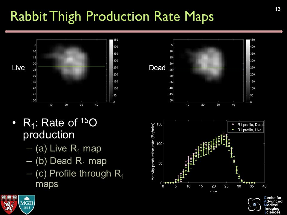 Rabbit Thigh Production Rate Maps 13 R 1 : Rate of 15 O production –(a) Live R 1 map –(b) Dead R 1 map –(c) Profile through R 1 maps LiveDead