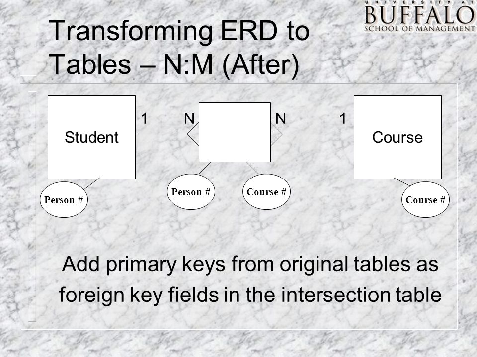 Transforming ERD to Tables – N:M (After) StudentCourse NN11 Person #Course # Person #Course # Add primary keys from original tables as foreign key fields in the intersection table