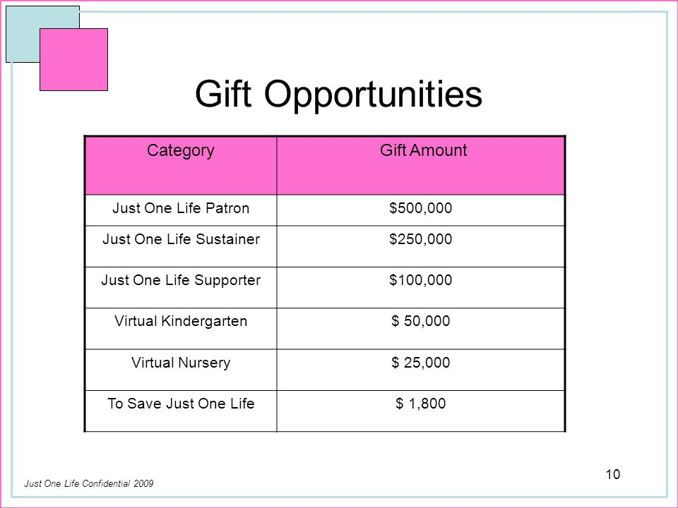 Just One Life Confidential 2009 10 Gift Opportunities Category Gift Amount Just One Life Patron$500,000 Just One Life Sustainer$250,000 Just One Life Supporter$100,000 Virtual Kindergarten$ 50,000 Virtual Nursery$ 25,000 To Save Just One Life$ 1,800