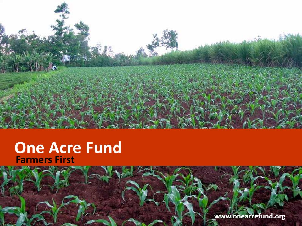 One Acre Fund Farmers First www.oneacrefund.org