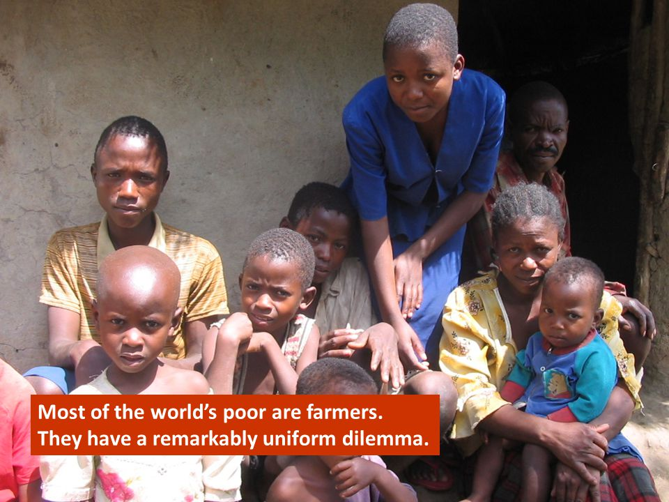 Our Client Most of the world's poor are farmers. They have a remarkably uniform dilemma.