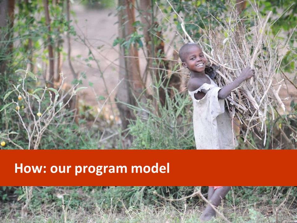 How: our program model