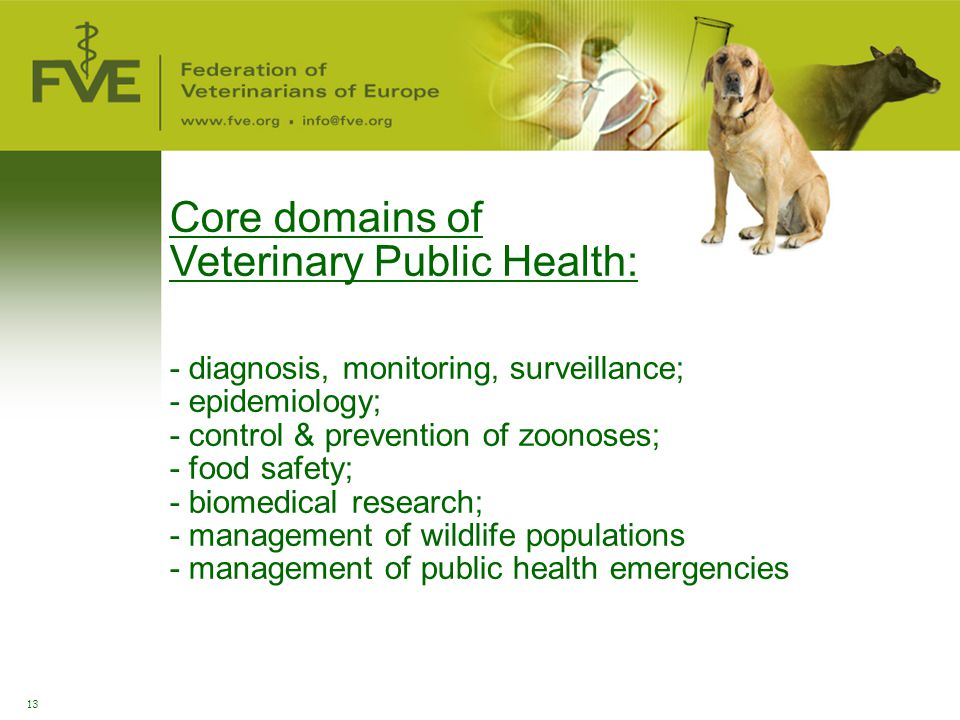 13 Core domains of Veterinary Public Health: - diagnosis, monitoring, surveillance; - epidemiology; - control & prevention of zoonoses; - food safety;