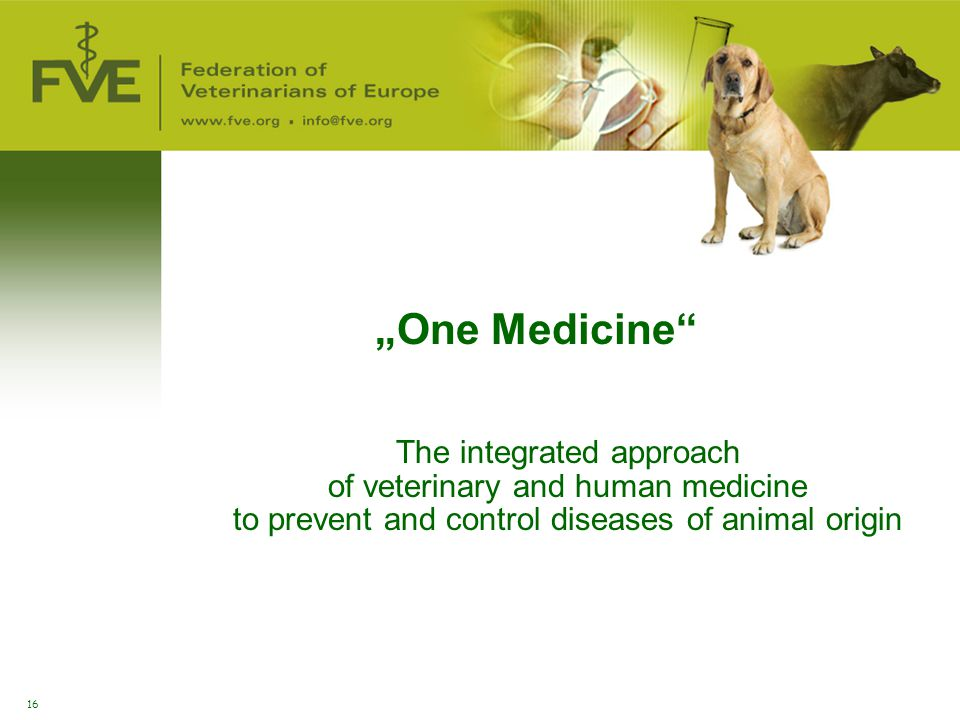 "16 The integrated approach of veterinary and human medicine to prevent and control diseases of animal origin ""One Medicine"""