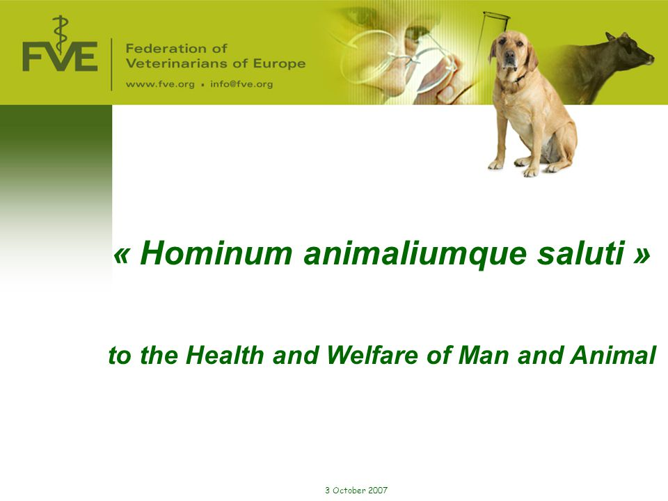 3 October 2007 « Hominum animaliumque saluti » to the Health and Welfare of Man and Animal
