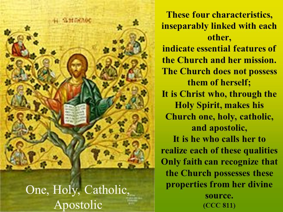One, Holy, Catholic, Apostolic These four characteristics, inseparably linked with each other, indicate essential features of the Church and her mission.