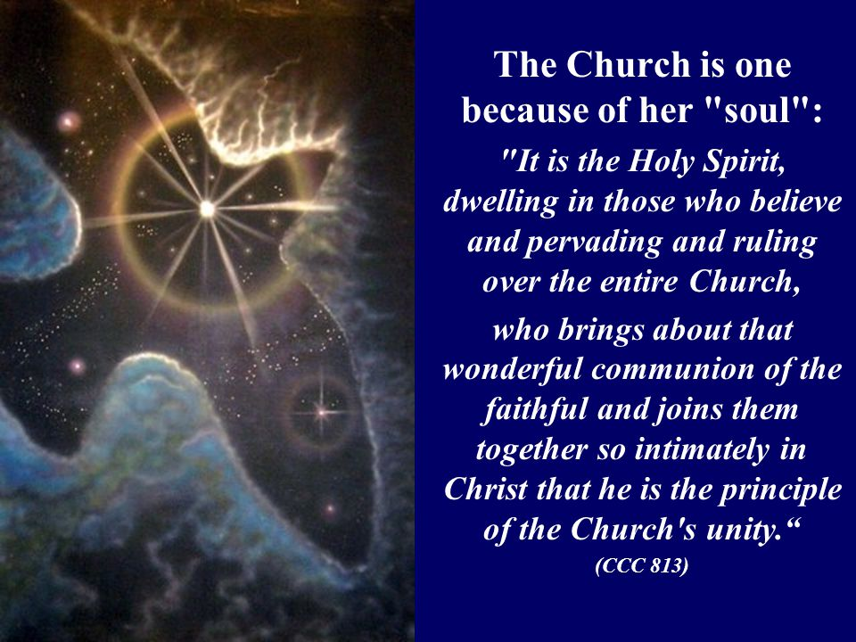 The Church is one because of her soul : It is the Holy Spirit, dwelling in those who believe and pervading and ruling over the entire Church, who brings about that wonderful communion of the faithful and joins them together so intimately in Christ that he is the principle of the Church s unity. (CCC 813)