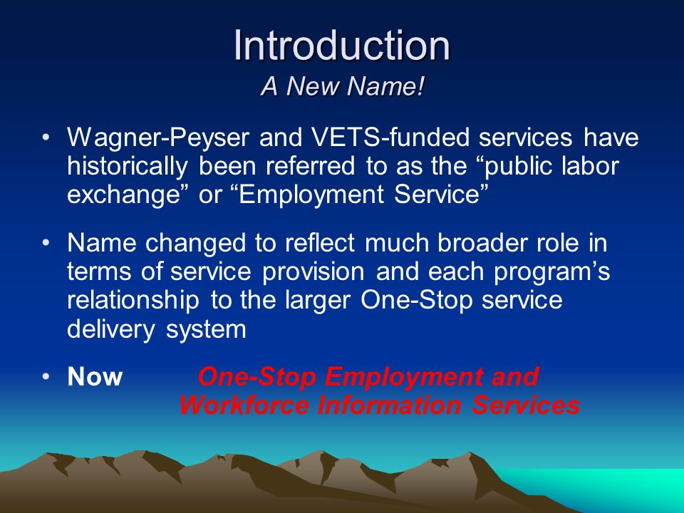 "Introduction A New Name! Wagner-Peyser and VETS-funded services have historically been referred to as the ""public labor exchange"" or ""Employment Servi"