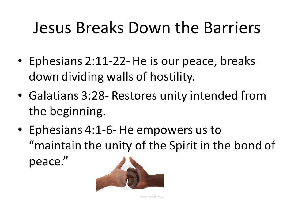 Jesus Breaks Down the Barriers Ephesians 2:11-22- He is our peace, breaks down dividing walls of hostility. Galatians 3:28- Restores unity intended fr