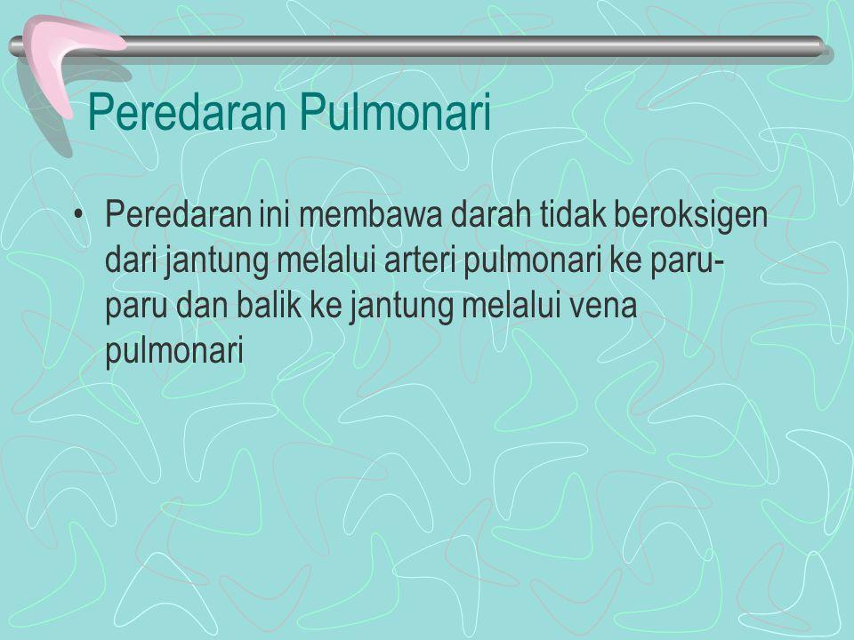 Peredaran Pulmonari Peredaran ini membawa darah tidak beroksigen dari jantung melalui arteri pulmonari ke paru- paru dan balik ke jantung melalui vena