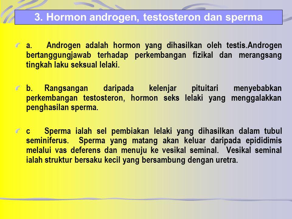 3. Hormon androgen, testosteron dan sperma a. Androgen adalah hormon yang dihasilkan oleh testis.Androgen bertanggungjawab terhadap perkembangan fizik