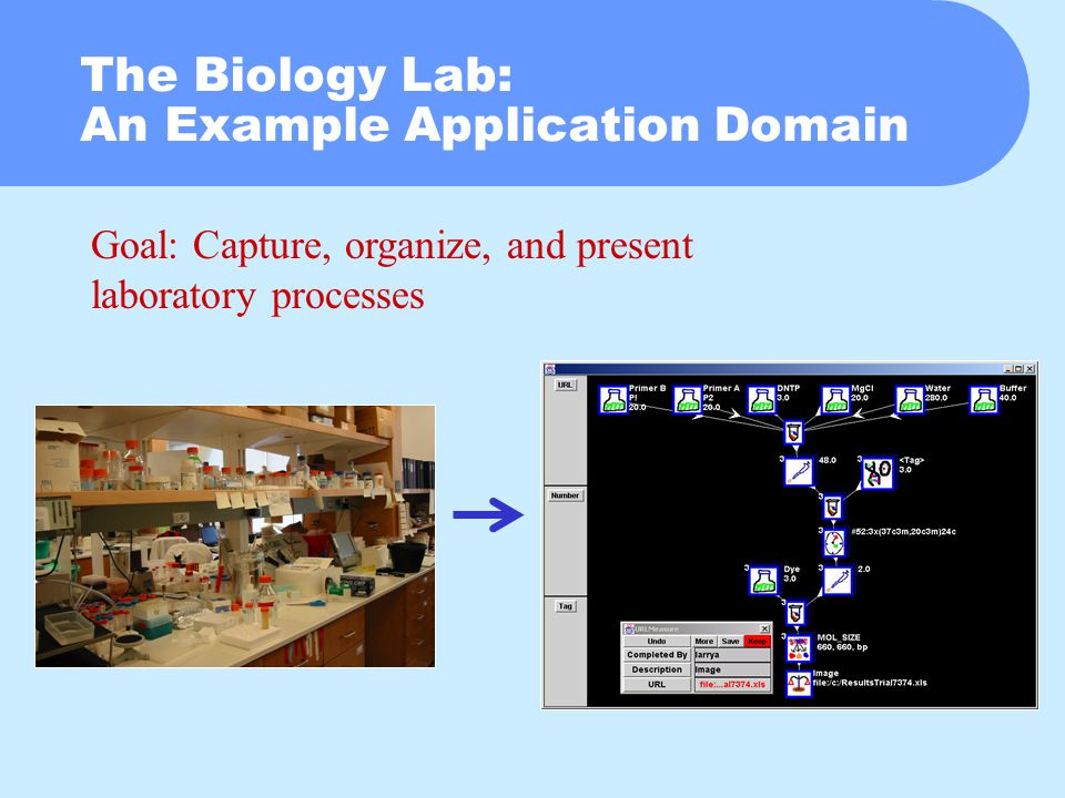 The Biology Lab: An Example Application Domain Goal: Capture, organize, and present laboratory processes