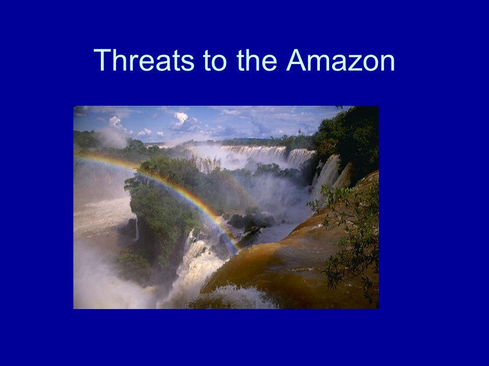 Threats to the Amazon