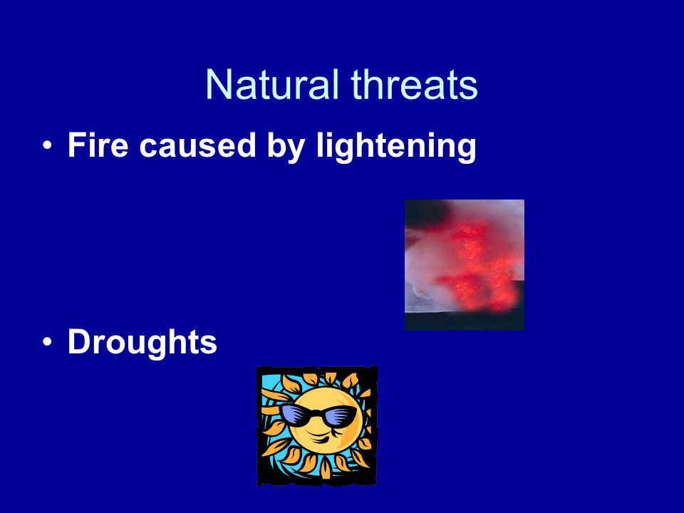Natural threats Fire caused by lightening Droughts