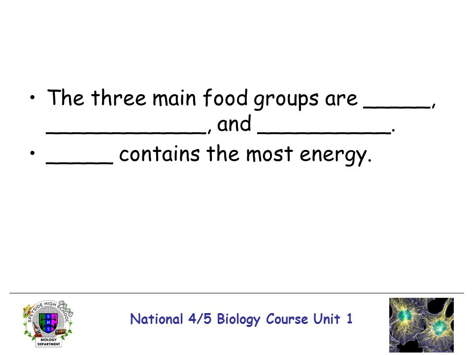 National 4/5 Biology Course Unit 1 The three main food groups are _____, ____________, and __________. _____ contains the most energy.