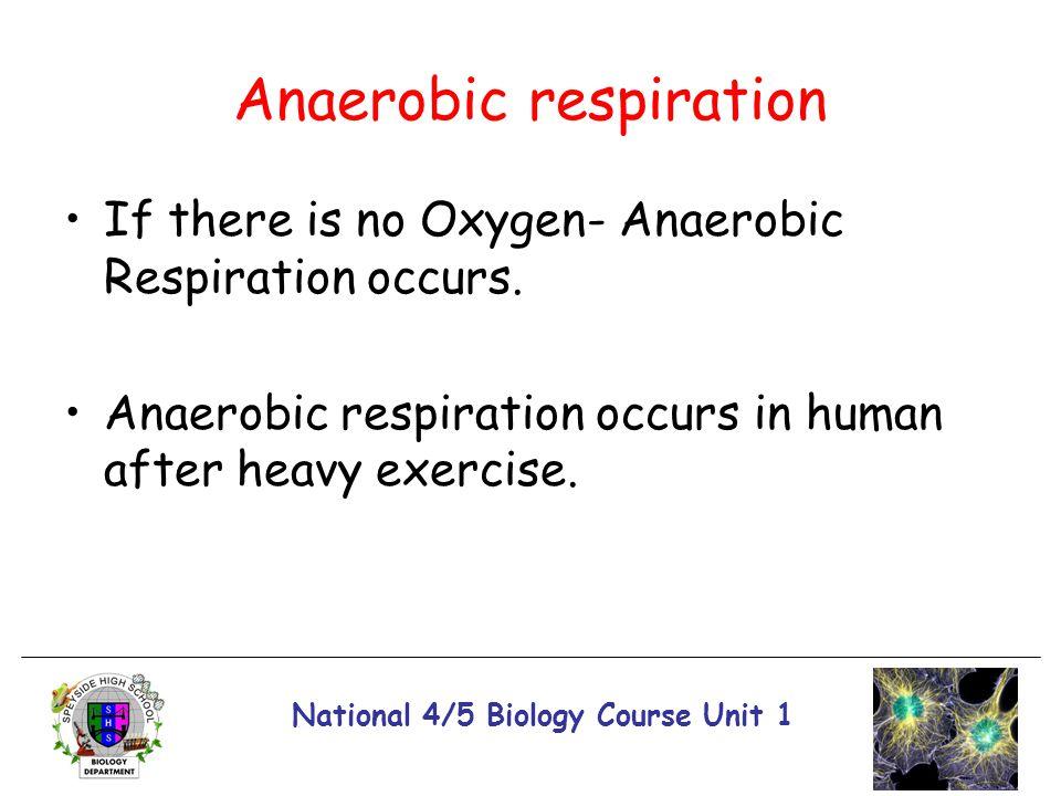 National 4/5 Biology Course Unit 1 Anaerobic respiration If there is no Oxygen- Anaerobic Respiration occurs. Anaerobic respiration occurs in human af