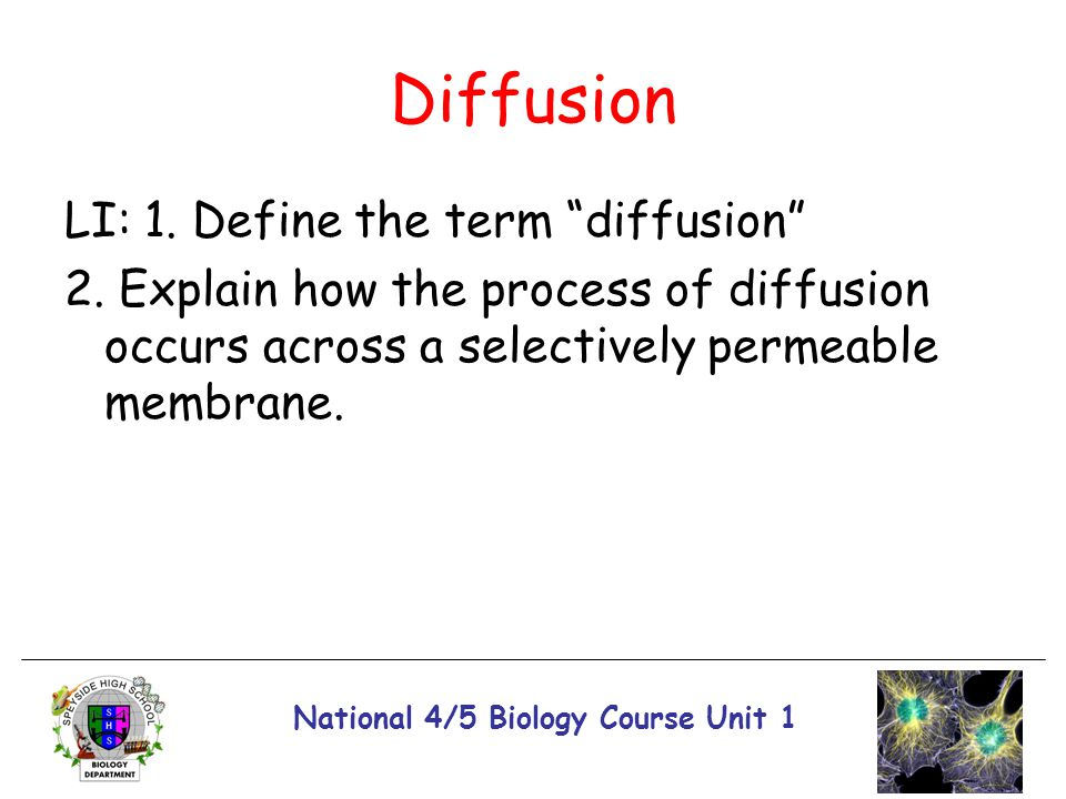 """National 4/5 Biology Course Unit 1 Diffusion LI: 1. Define the term """"diffusion"""" 2. Explain how the process of diffusion occurs across a selectively pe"""