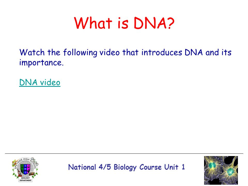 National 4/5 Biology Course Unit 1 What is DNA? Watch the following video that introduces DNA and its importance. DNA video