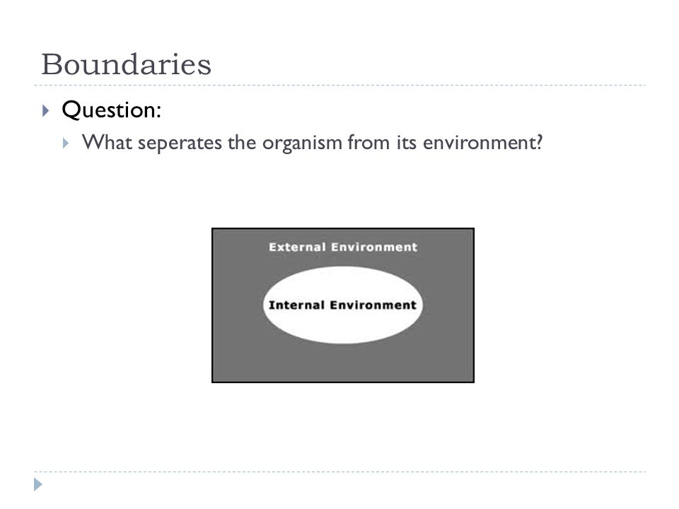 Boundaries  Question:  What seperates the organism from its environment?