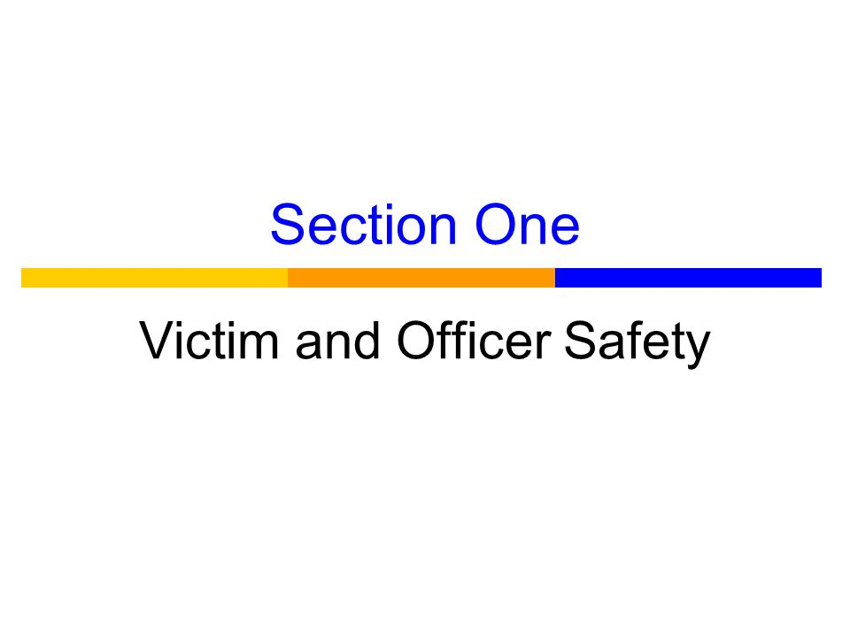 Section One Victim and Officer Safety