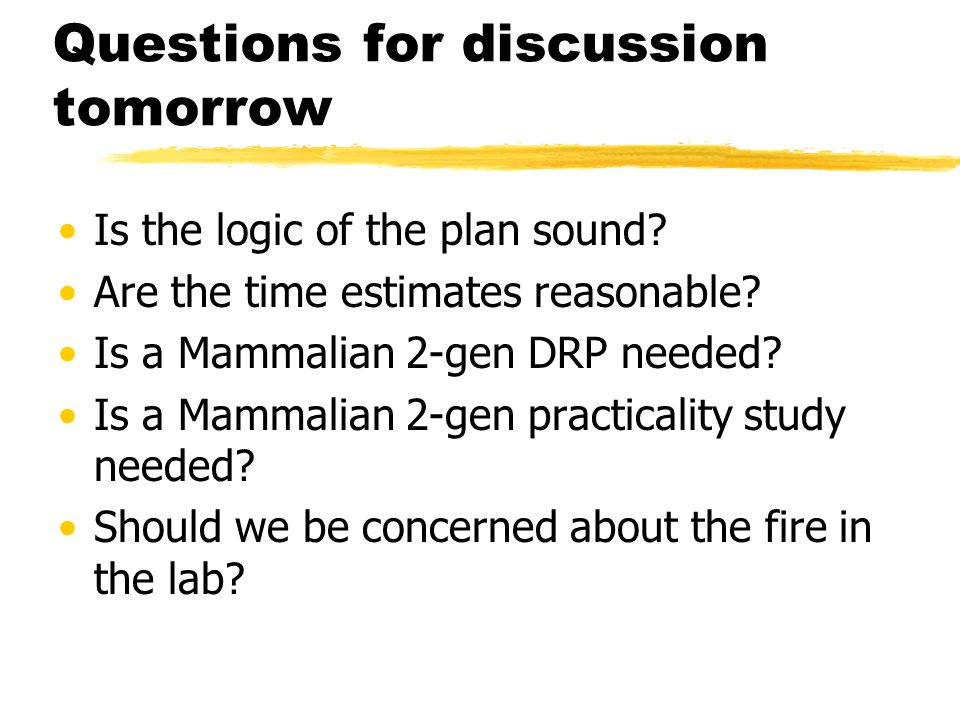 Questions for discussion tomorrow Is the logic of the plan sound.