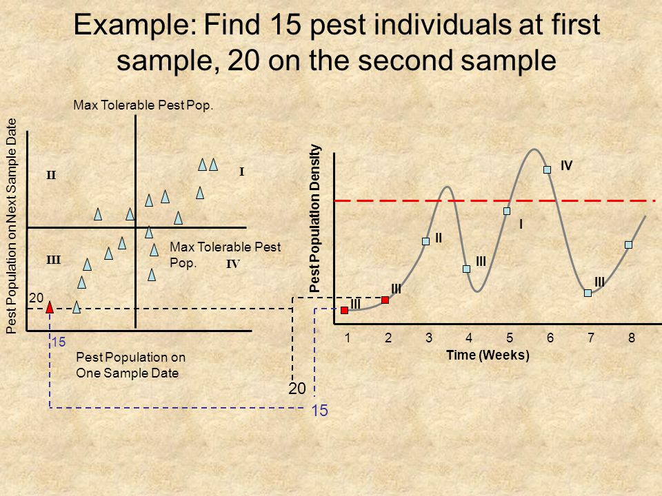 Example: Find 15 pest individuals at first sample, 20 on the second sample I II III IV Pest Population on One Sample Date Pest Population on Next Sample Date Max Tolerable Pest Pop.