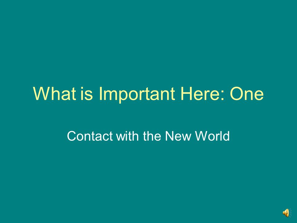 What is Important Here: One Contact with the New World