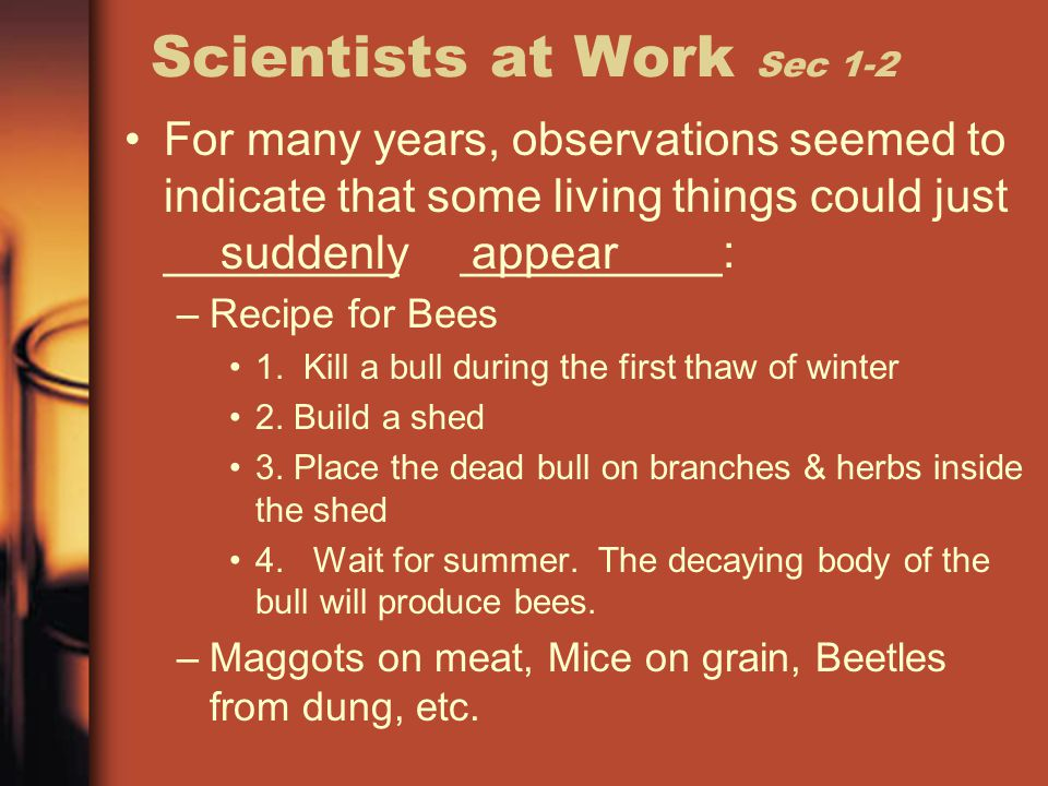 Scientists at Work Sec 1-2 For many years, observations seemed to indicate that some living things could just _________ __________: –Recipe for Bees 1