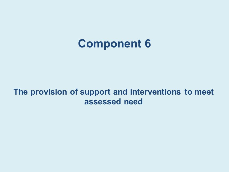 Component 6 The provision of support and interventions to meet assessed need