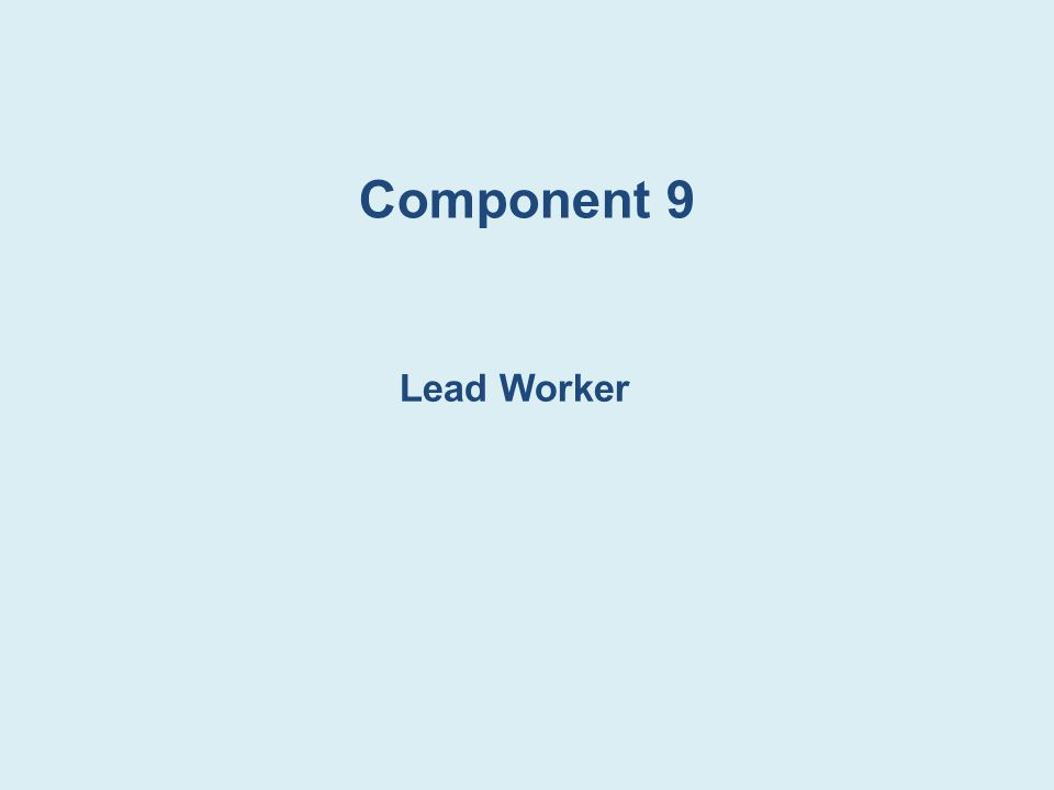 Component 9 Lead Worker